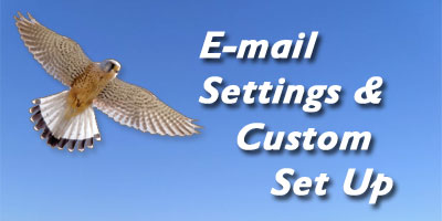 Email Settings & Custom Set Up